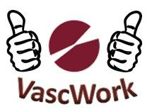 VascWork